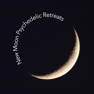 New Moon Psychedelic Retreats