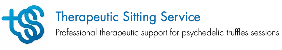 Therapeutic Sitting Service