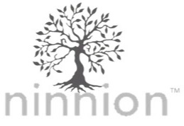 Ninnion